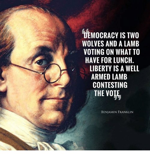 democracy-is-two-wolves-and-a-lamb-voting-on-what-34263209.png
